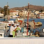 Φιστίκι Αίγινας και Φεστιβάλ Φιστικιού, Aegina's Pistachios and Pistachio (Fistiki) Festival