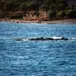Αίγινα το Χειμώνα, Aegina in Winter