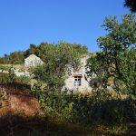 Κοντός, Αίγινα, Kontos, Aegina