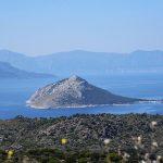 Τζίκηδες Αίγινα, Tzikides Aegina