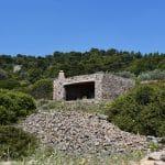 Μπενάκηδες, Αίγινα, Benakides, Aegina