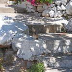 Βλάχηδες, Αίγινα, Vlachides, Aegina