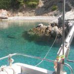 Aegina Cruises, Κρουαζιέρες Αίγινα