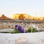 Aegina Hotel, Ξενοδοχείο Αίγινα
