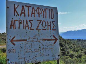 Ντίνα Χατζίνα, Αίγινα και αναμνήσεις, Dina Hatzina, Memories of Aegina